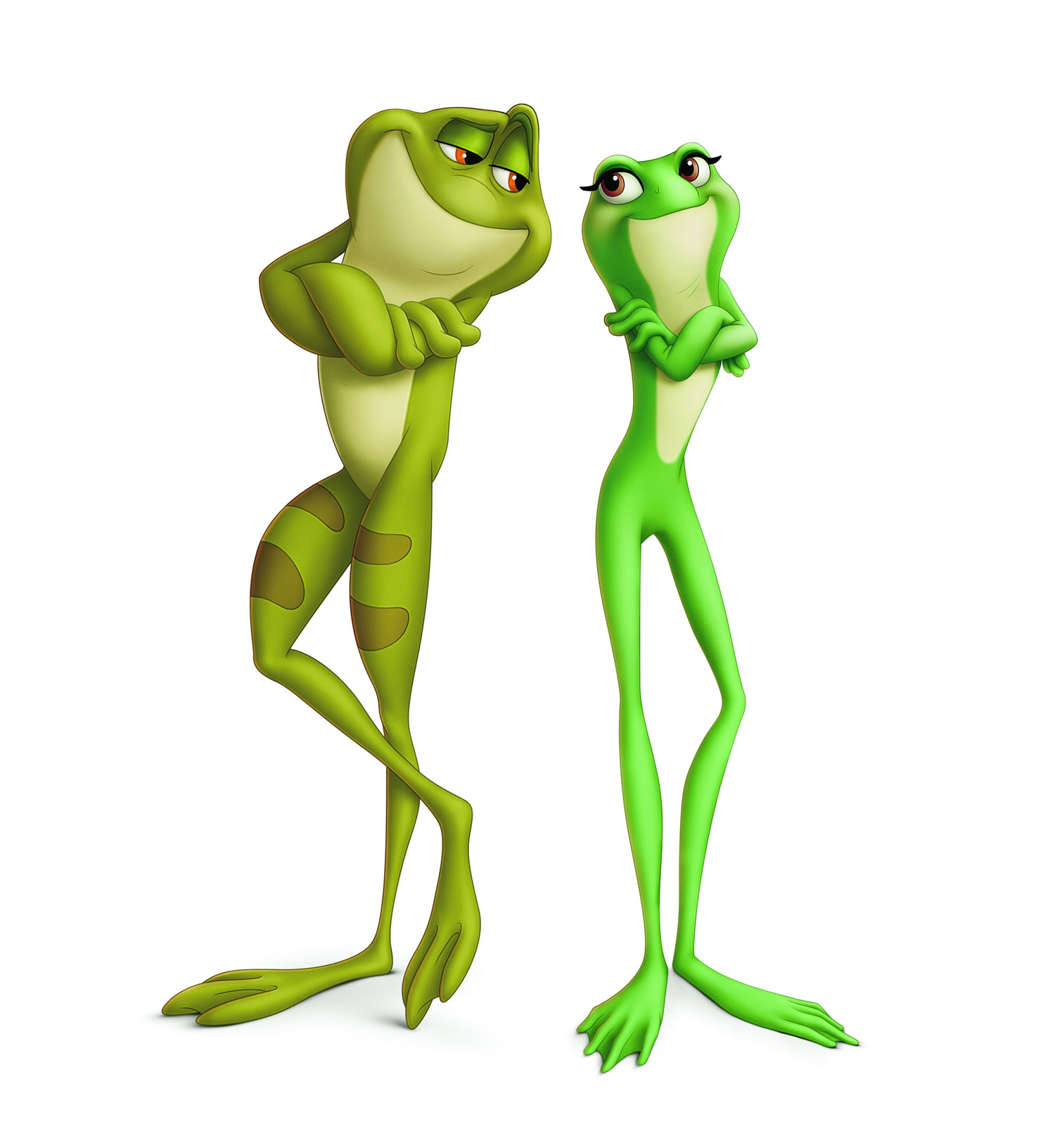 This is a picture of Bright Princess and the Frog Pictures