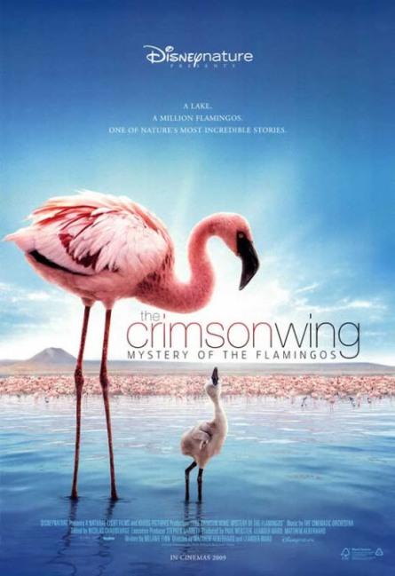 crimsonwing