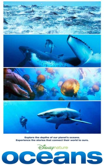 OCEANS, from top: bottlenose dolphins, humpback whales, sea nettles, great white shark, 2009. ©Disneynature