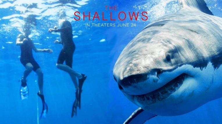 shallows4